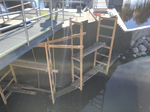The scaffolding marks where Penetron crystalline material was topically applied to ensure a waterproof – and durable – concrete structure for the Jändja fishing grounds.