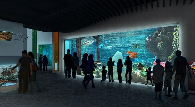 Penetron Admix Helps Launch New Tacoma Aquarium Penetron