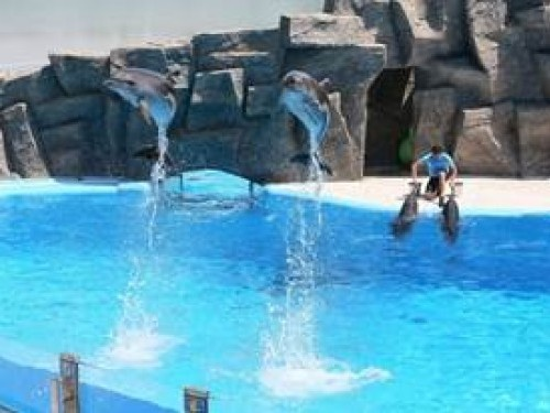 6th of May Park & Dolphinarium